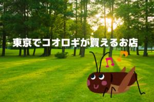 東京、都内のコオロギが買えるお店マップ、爬虫類など生き餌の販売