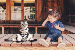 子育て関連のBabyTech(ベビーテック)とペット・愛玩動物関連のPetTechを追加しました
